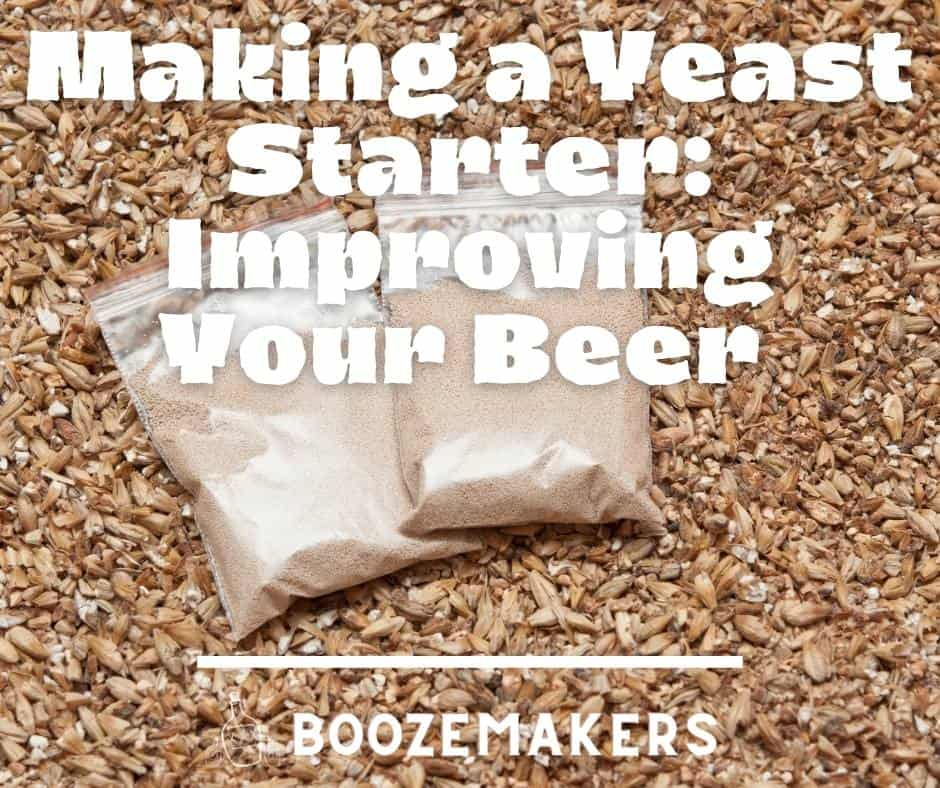 Making a Yeast Starter: Improving Your Beer