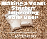 Making a Yeast Starter: Improving Your Beer and Speeding Things Up a Bit